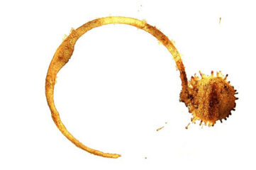 photo of coffee ring stain